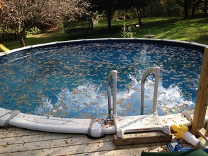 Листва в бассейне
